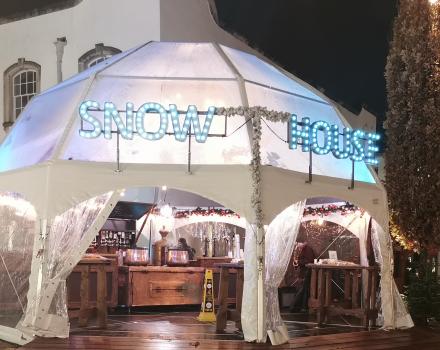 Igloo Tent 1
